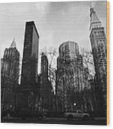 Madison Square Park Flatiron District New York City Wood Print