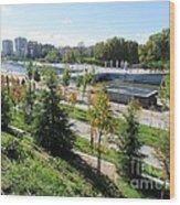 Madrid River Park Wood Print