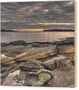 Madrona Point Wood Print