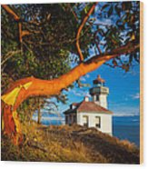 Madrone And Lighthouse Wood Print