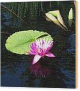 Magenta Lily Monet Wood Print