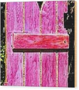 Magenta Painted Door In Garden  Wood Print
