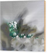 Magic Glass 2 Wood Print by Judy Paleologos