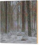 Magic In The Fog 2 Wood Print