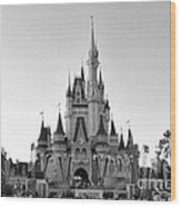 Magic Kingdom Castle In Black And White Wood Print