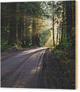 Magic Of Redwood Wood Print