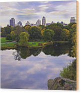 Magical 2 - Central Park - Nyc Wood Print