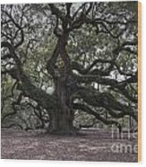 Magical Angel Oak Wood Print