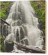 Magical Falls - Fairy Falls In The Columbia River Gorge Area Of Oregon Wood Print