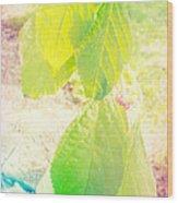 Magical Leaves Wood Print