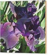 Magical Purple Iridescent  Iris Wood Print