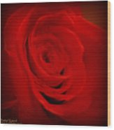 Magical Rose Wood Print