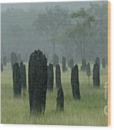 Magnetic Termite Mounds Wood Print by Bob Christopher