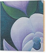 Magnificent Magnolia Buds Vertical Pink Flower Bud Closeup Textu Wood Print by Christina Rahm