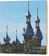 Magnificent Minarets Wood Print
