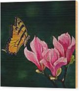 Magnolia And Butterfly Wood Print