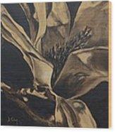 Magnolia Blossom In Sepia Wood Print