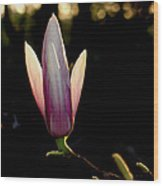 Magnolia Candle Wood Print
