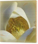 Magnolia Cloud Wood Print