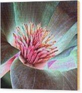 Magnolia Flower - Photopower 1844 Wood Print