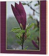 Magnolia Greeting Wood Print