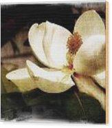 Magnolia IIi Wood Print by Tanya Jacobson-Smith