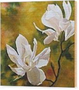 Magnolia In Spring Wood Print