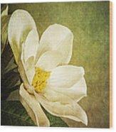 Magnolia Morning Wood Print