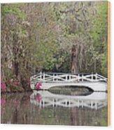 Magnolia Plantation Gardens Series IIi Wood Print