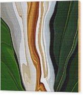 Magnolia Study No 4 Wood Print