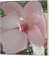 Magnolia Surprise Wood Print