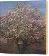 Magnolia Tree In Bloom Wood Print