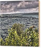 Mahanoy Mountain  Wood Print