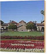 Main Quad Stanford California Wood Print