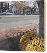 Main Street East Hampton New York Wood Print