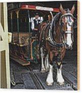 Main Street Horse And Trolley Wood Print