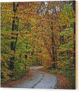 Journey Maine 55 Wood Print