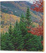 maine 57 Baxter State Park Loop Road Fall Foliage Wood Print