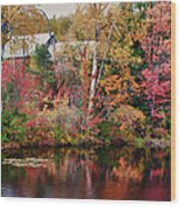 Maine Barn Through The Trees Wood Print by Jeff Folger
