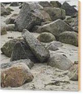 Maine Beach Rocks Wood Print