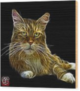 Maine Coon Cat - 3926 - Bb Wood Print