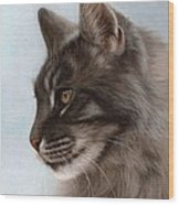 Maine Coon Painting Wood Print