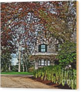 Maine Cottage In Spring Wood Print