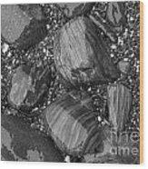 Maine Stones Wood Print