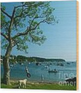 Maine Summer Day At Mackerel Cove   Wood Print