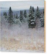 Maine Woods Wood Print