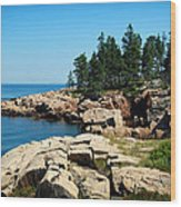 Maine's Rocky Coastline Wood Print