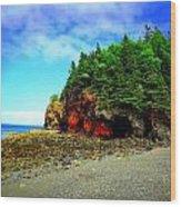 Maine's Rugged Shore Wood Print