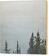 Majestic - Banff Wood Print