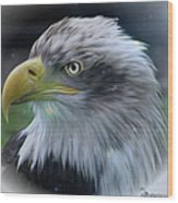 Majestic Eagle Of The Usa - Featured In Feathers And Beaks-comfortable Art And Nature Groups Wood Print